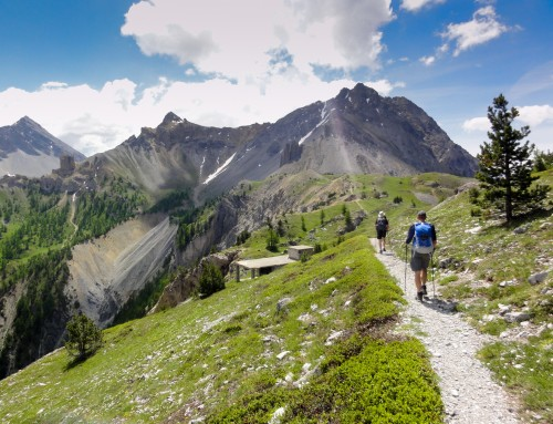 Alpine Trekking Week in French Alps