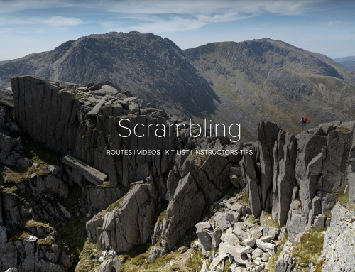 New Digital Scrambling Feature